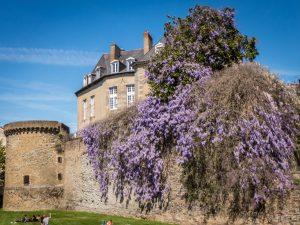 Visiter Rennes en une journée gourmande