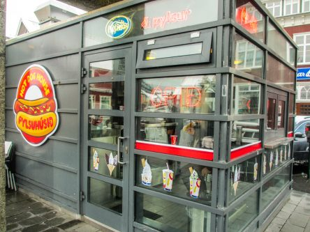 hot-dog-reykjavik