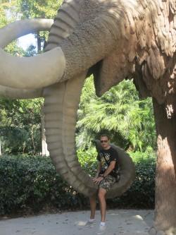 Elephant dans le Parc de la Ciutadella