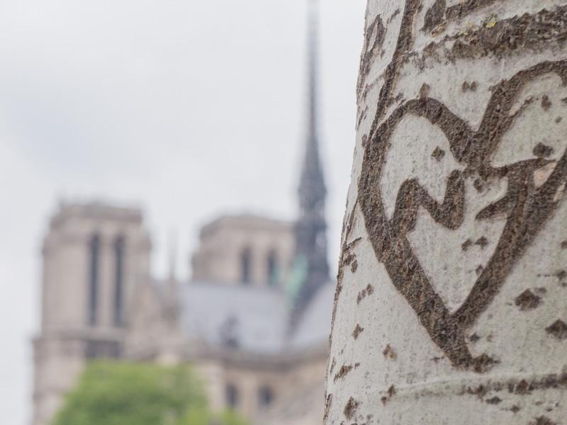Notre-Dame-de-Paris depuis les quais de Seine