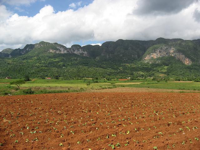 Vallée de Viñales
