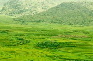 Que visiter au Vietnam : les 8 incontournables