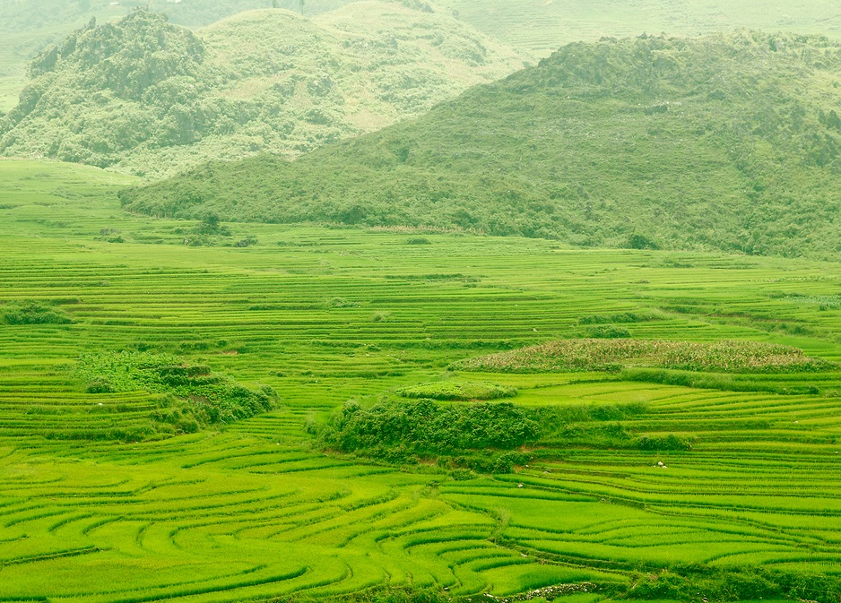 province de Siapa au vietnam
